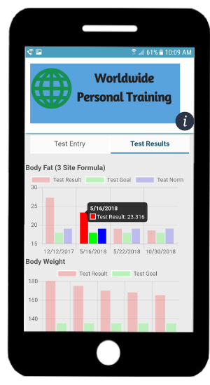 Fitness Now phone app testing